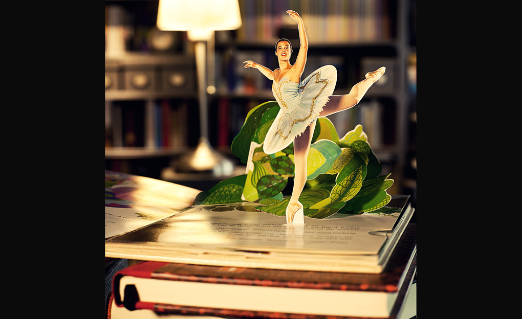 Dansacademie & bibliotheek