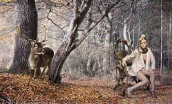 Artistry-reindeer