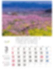 2020天地の農カレンダー日玉