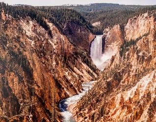 Lower Falls at Yellowstone's Grand Canyon