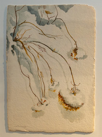 Coco Connolly: Weeds in Snow