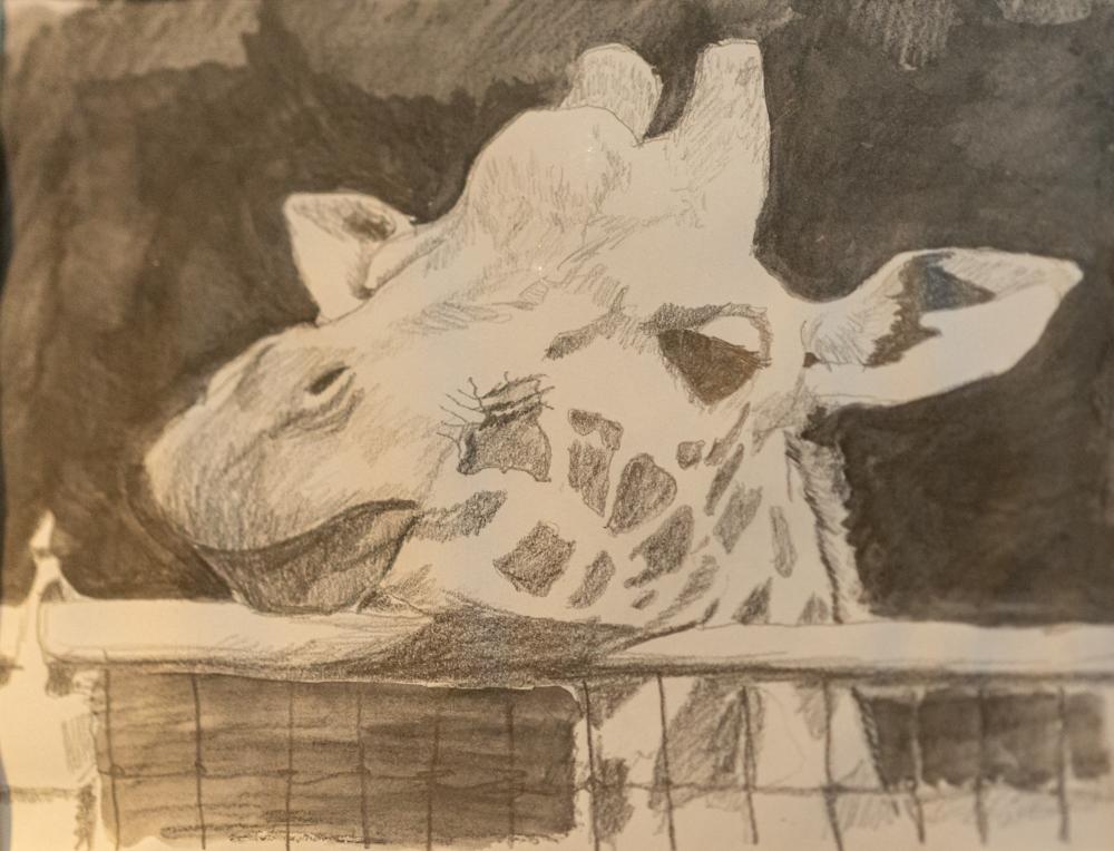 ArtistShowcase20-139