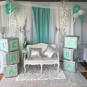 Baby & Co. (Tiffany's Themed Baby Shower)