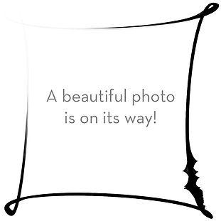 placeholder photo square 1.jpg