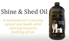 shine-and-shed-oil.jpg