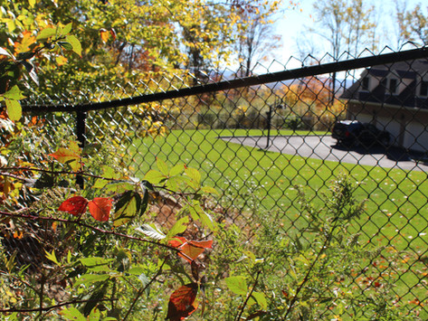 The Lowdown on Chain Link Fence Installation in Orange County and Westchester County, NY Areas