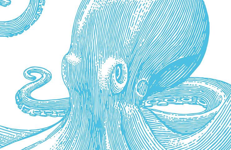 Beautiful Wonder UK Jez Clarke  Be More Octopus  sustainable Production