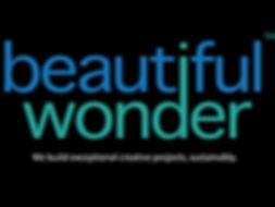 bwse logo.jpg