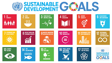 United Nations Sustainable Development G