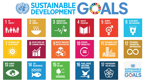 united_nations_sustainable_development_g