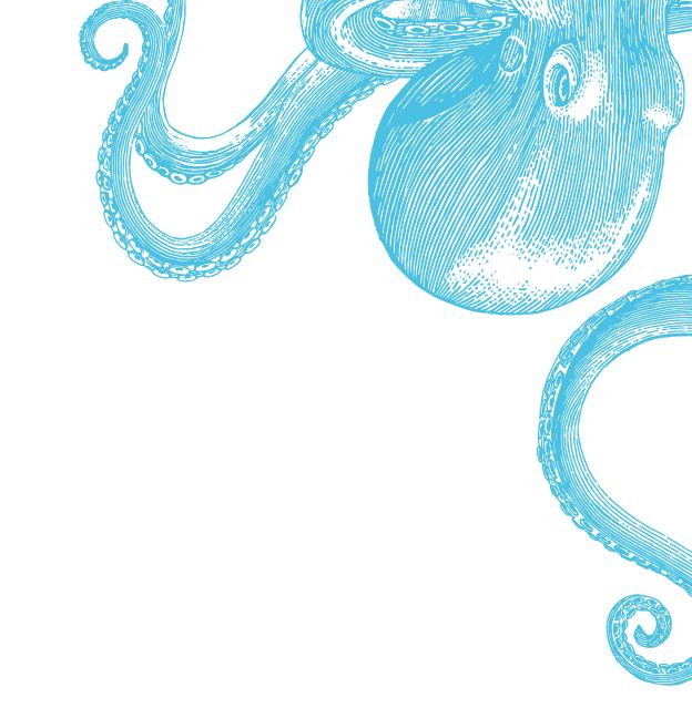 Beautiful Wonder UK  Jez Clarke  Be More Octopus logo