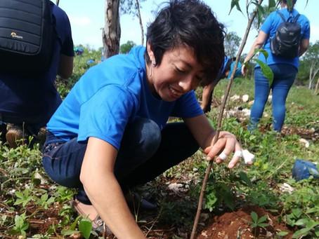 Mejores Alianzas, Mejores Bosques y los Objetivos de Desarrollo Sostenible