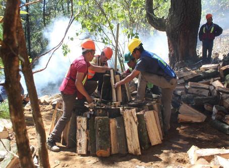 Bosques: hogar natural de empresas