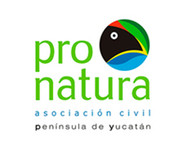 pronatura_yucatán.jpg