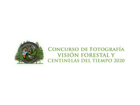 Conafor y Reforestamos premian las mejores fotografías forestales de México