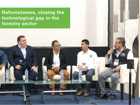 Reforestamos, closing the technological gap in the forestry sector