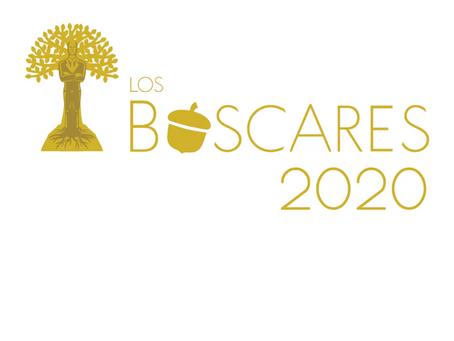 Los Bóscares 3a. Edición. Reconociendo a las mejores acciones empresariales a favor de los bosques