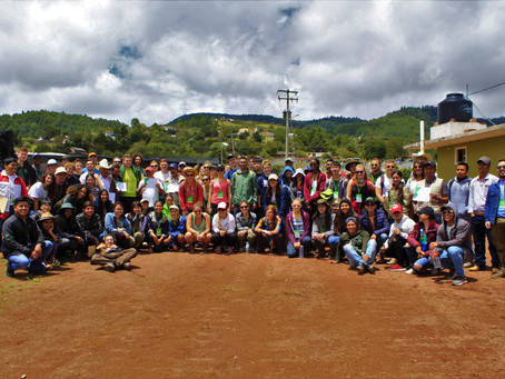 México reúne a estudiantes forestales de más de 28 países