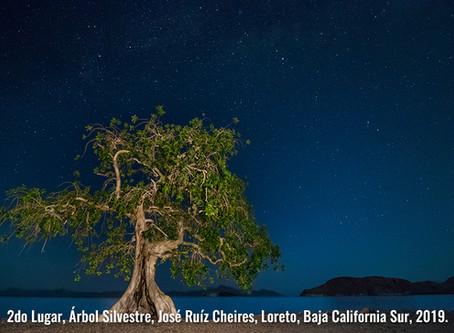 5ª Edición de concurso de fotografía Visión Forestal y Centinelas del Tiempo