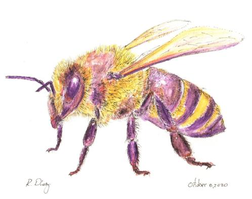 Bee.tif