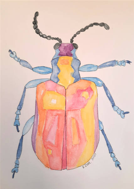 Air Potato Beetle color