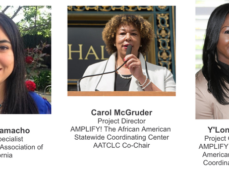 LIVE WEBINAR: African-American Focus Group, Attitudes and Strategies Surrounding Flavored Tobacco
