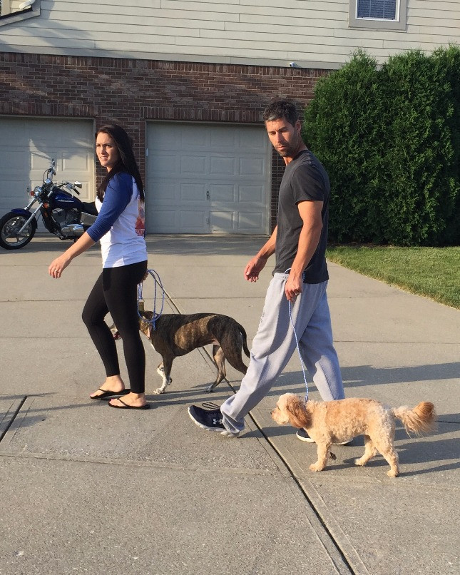 success story mending fences Indiana Dog Whisperer.jpg