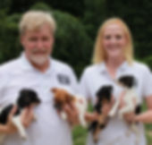 Indiana Dog Whisperer Marci Burk and Vernon Taylor  |  Indiana dog training  |  Dog behavior modification training  |   It's never too late for your dog to change