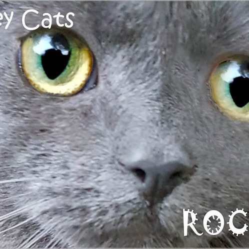 Grey Cats Rock Magnet