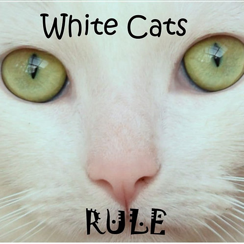 White Cats Rule Magnet