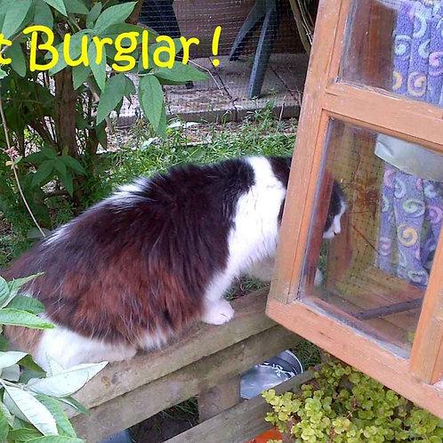 Cat Burglar! Magnet