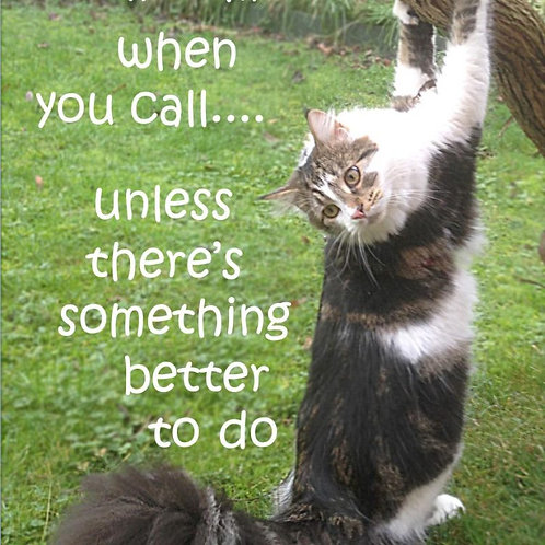A Cat Will Come When You Call Magnet