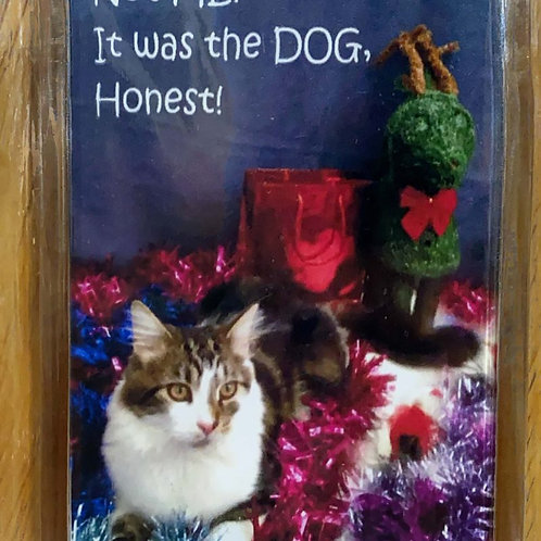 Not Me! It was the DOG….Honest! Magnet