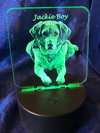 Custom Dog Photo Battery operated color changing light