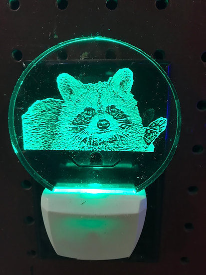 Raccoon head  Night Light
