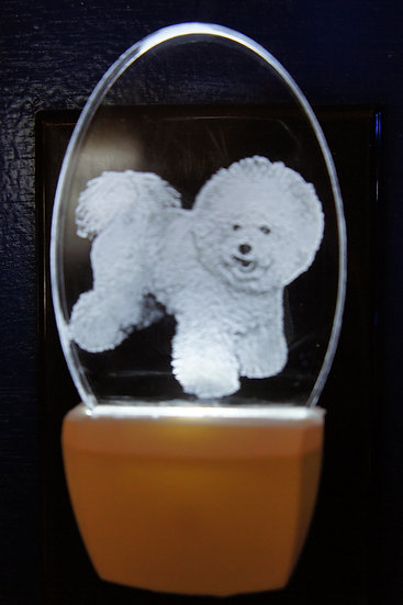 bichon frise night light