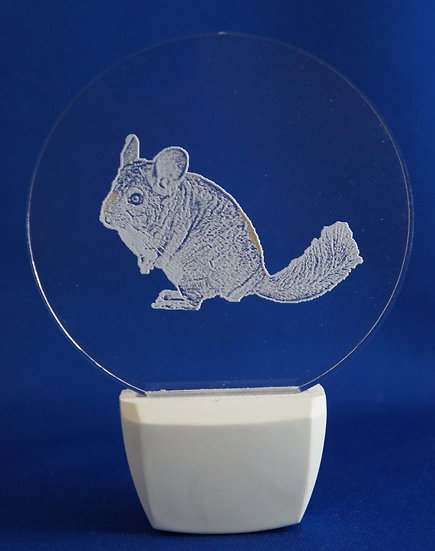 Chincilla Night Light