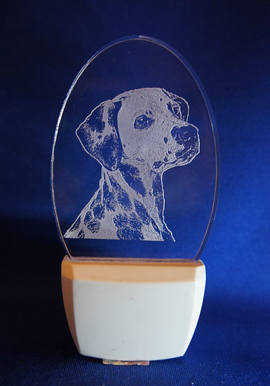 Dalmation Night Light