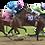 Thumbnail: Horse racers night light