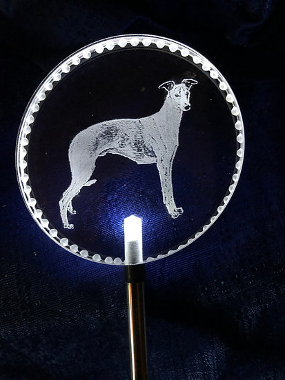 Greyhound full body etched Lighted solar stake