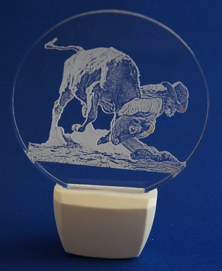 Bull Wrestling NIGHT LIGHT