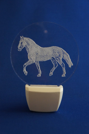 Custom photo from your picture Horse Night Light