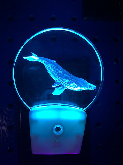 Humpback whale Night Light