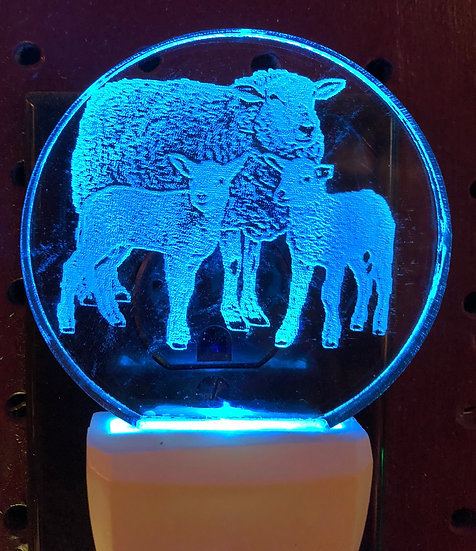 Sheep with lambs night light