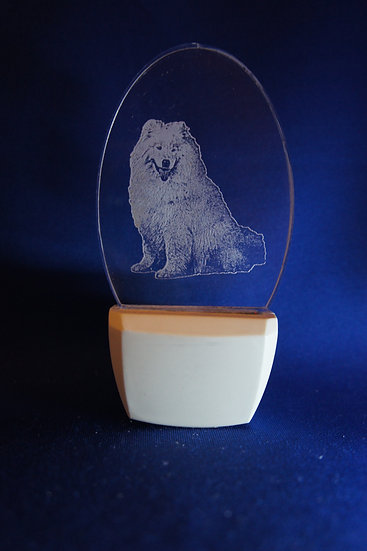 Samoyed Night Light