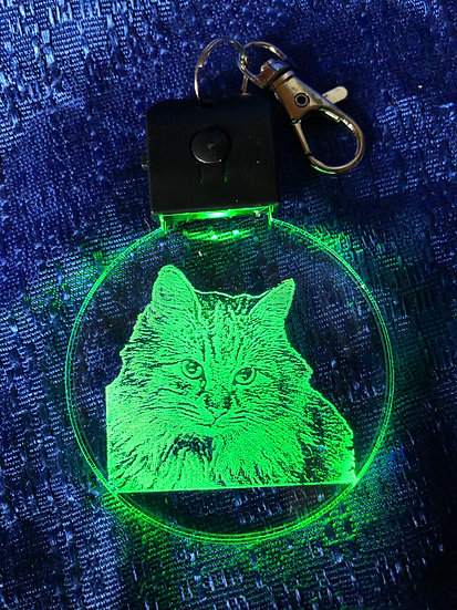 Long haired Cat  lighted keychain