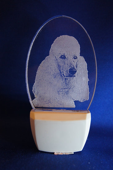Standard Poodle Night Light