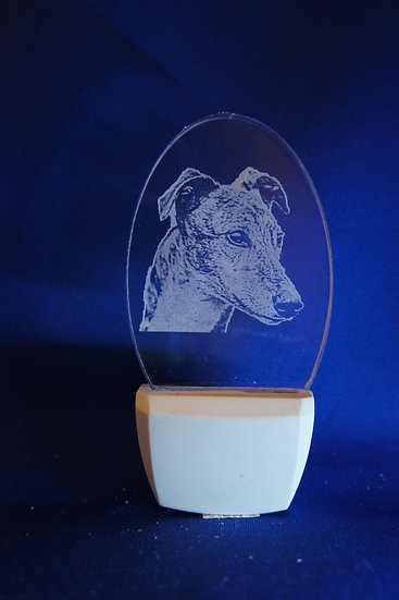 Greyhound Night Light