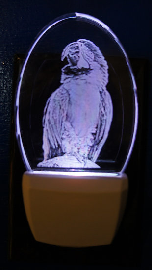 Parrot night light