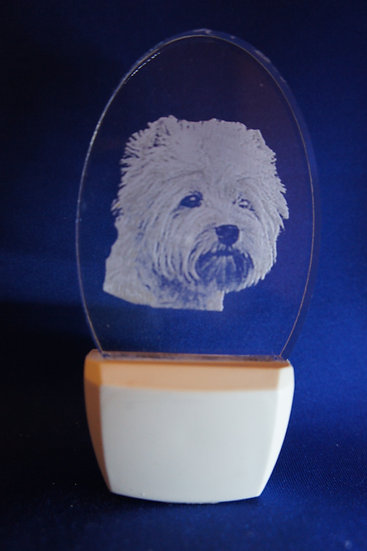 Wes Highland Terrier Head Night Light